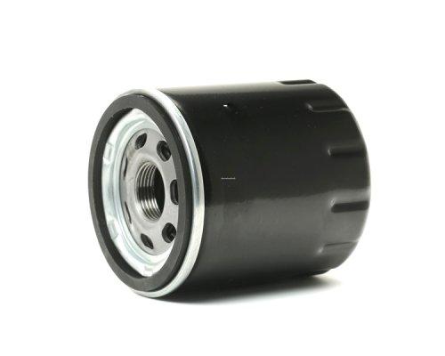 Масляный фильтр Fiat Ducato II / Citroen Jumper II / Peugeot Boxer II 2.2D / 2.2HDi 2006- 10-0L-L06 Ashika (Италия)