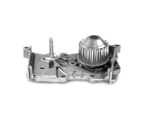 Помпа / водяной насос Renault Kangoo II 1.6 (бензин) 08- 160009410 Automega (Германия)